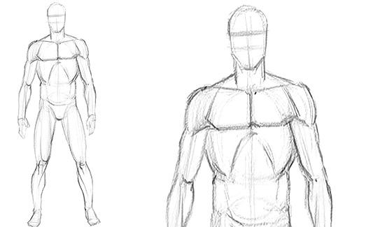 Corpo Masculino - Iremos estudar o corpo humano com foco no masculino.