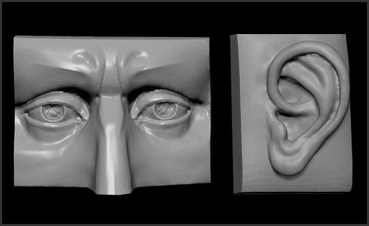 Elementos da face - Iremos ver os elementos separados do rosto, como nariz, olhos, boca e orelha.
